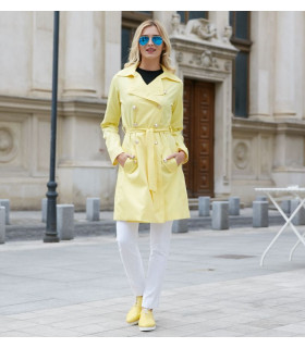 Yellow Spring Trench