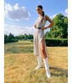 Mettalic Dress